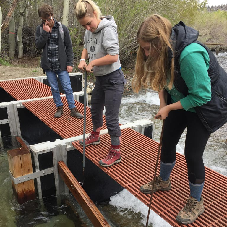 Students use equipment to conduct research on a lake