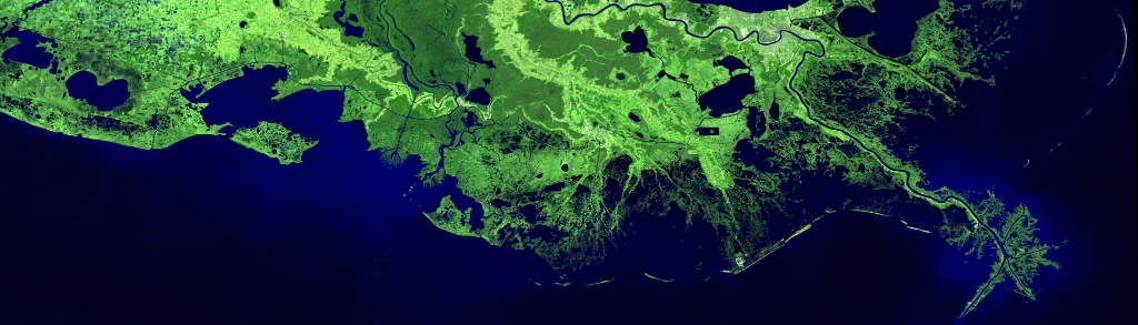 A satellite image shows the Mississippi River Delta coastal region