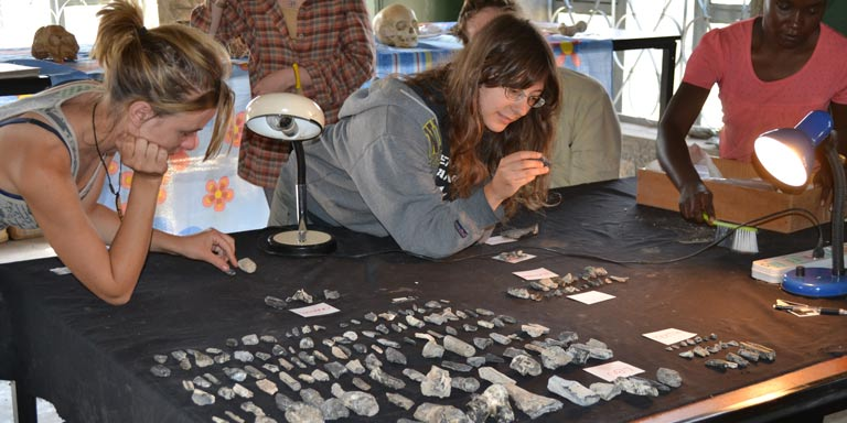 Students analyzing a collection of rocks and fossils
