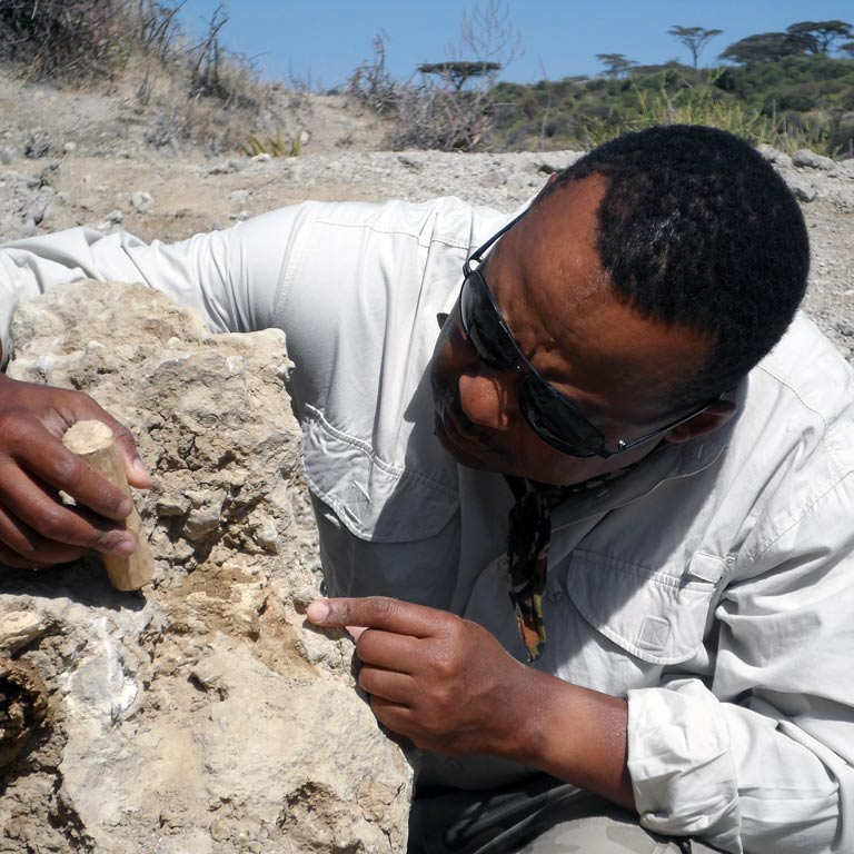 Man closely examining a small rock formation